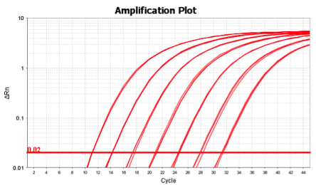 amlification-plot
